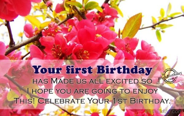 Celebrate Your First Birthday