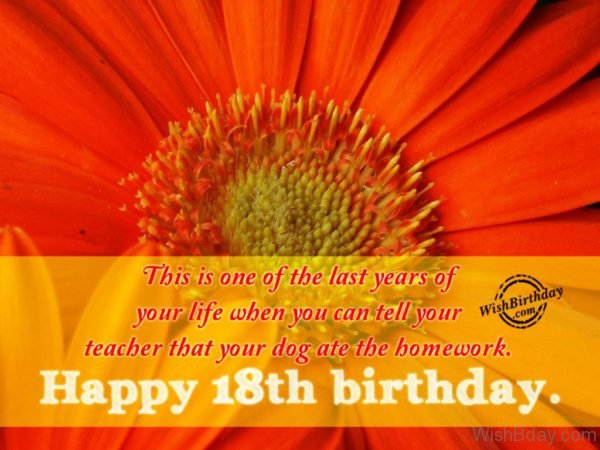 Eighteenth Birthday Wish