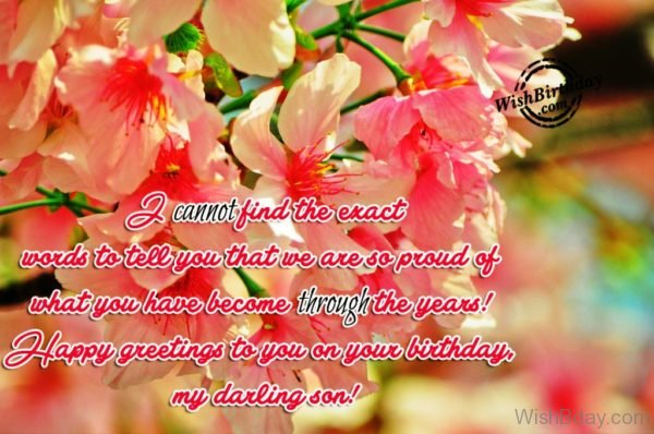 Happy Birthday – My Darling Son