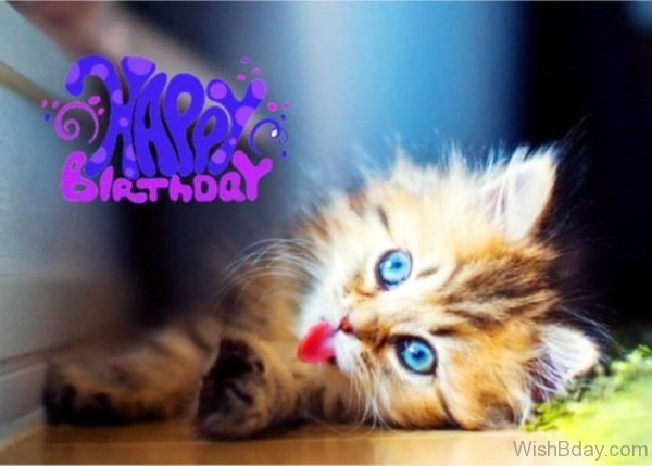 Happy Birthday Cute Cat Image