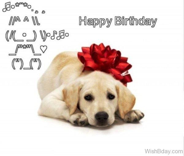 Happy Birthday Cute Dog Image