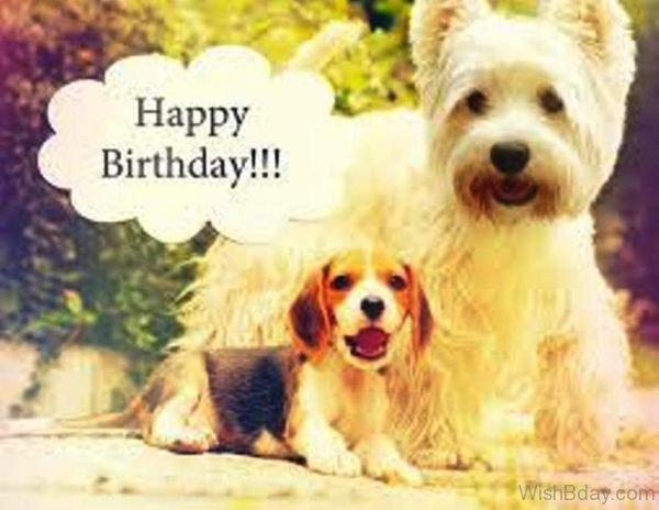 Happy Birthday Dog Image 1