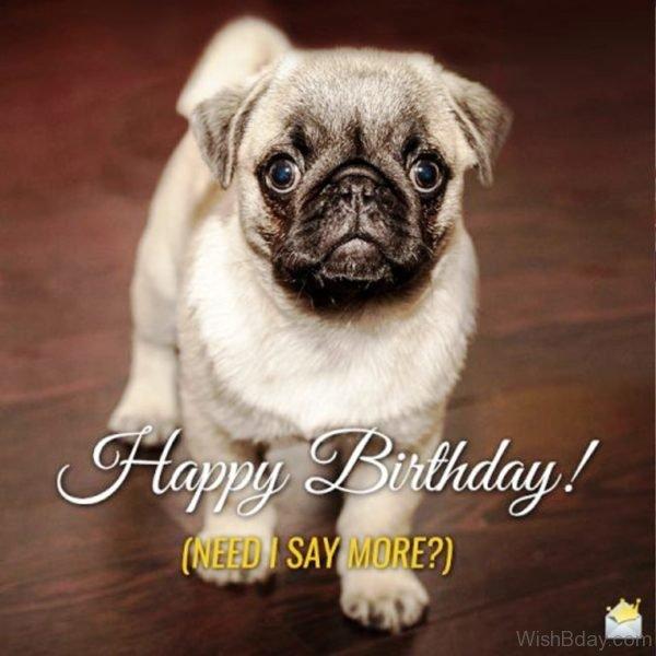 Happy Birthday Need I Say More 1