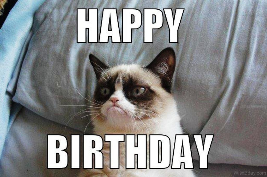 58 Grumpy Cat Birthday Wishes