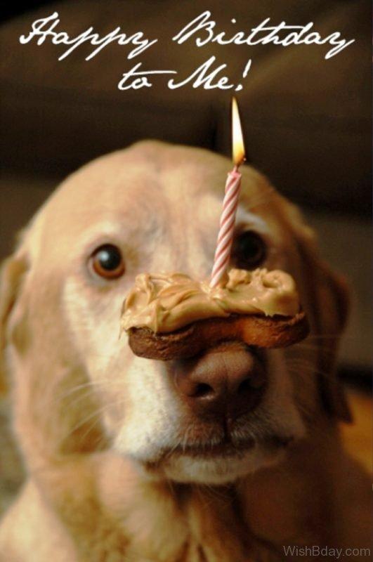 Happy Birthday To Me 1