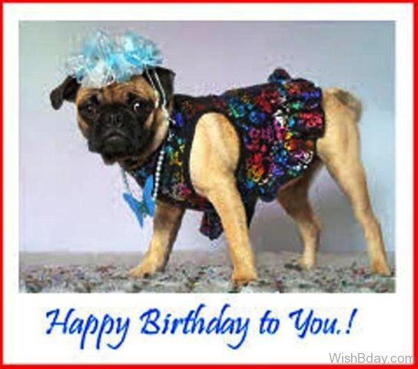 Happy Birthday To My Dear 1