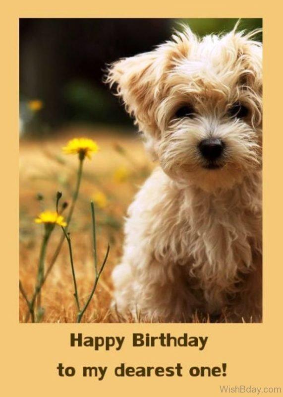 Happy Birthday To My Dearest One