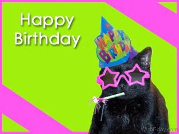 Happy Birthday With Black Cat