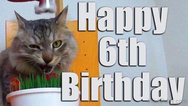 Happy Birthday With Cat 1