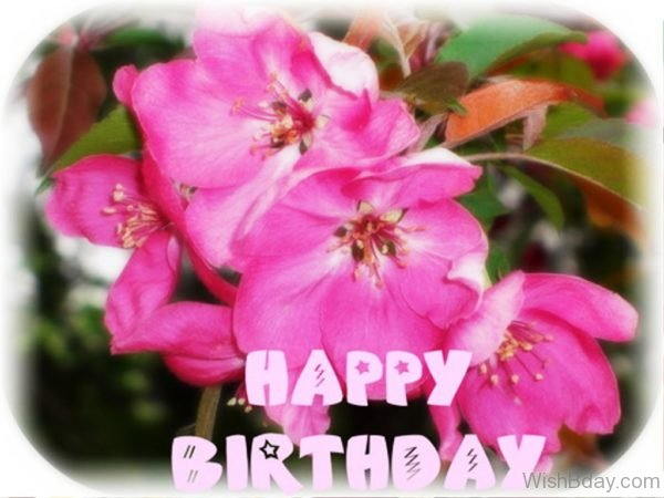 Happy Birthday With Pink Flower