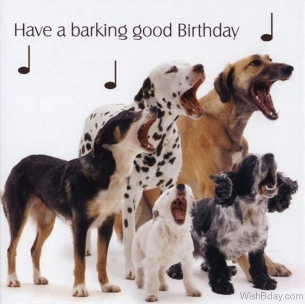 Have A Barking Good Birthday