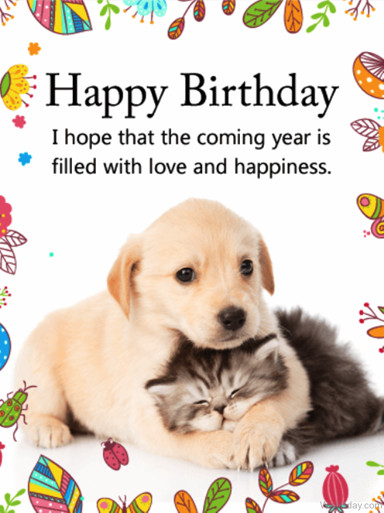 64 Dog Birthday Wishes – Cat Birthday Greetings