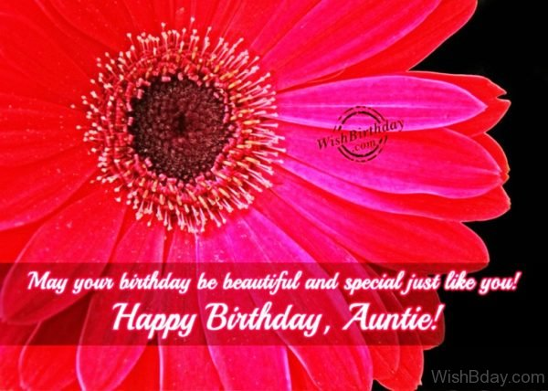 May Your Birthday Be Special Just Like You Aunt