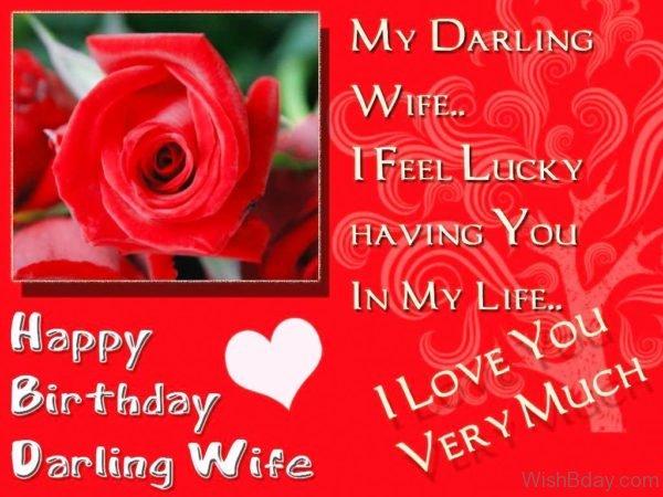 My Darling Wife