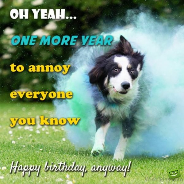 Oh Yeah One More Year TO Annoy Everyone You KNow