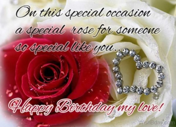 On This Special Occasion A Special Rose For Someone So Special Like You