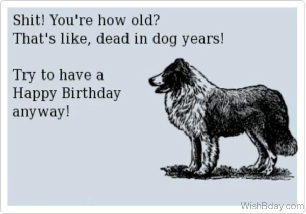 Shit You Are How Old
