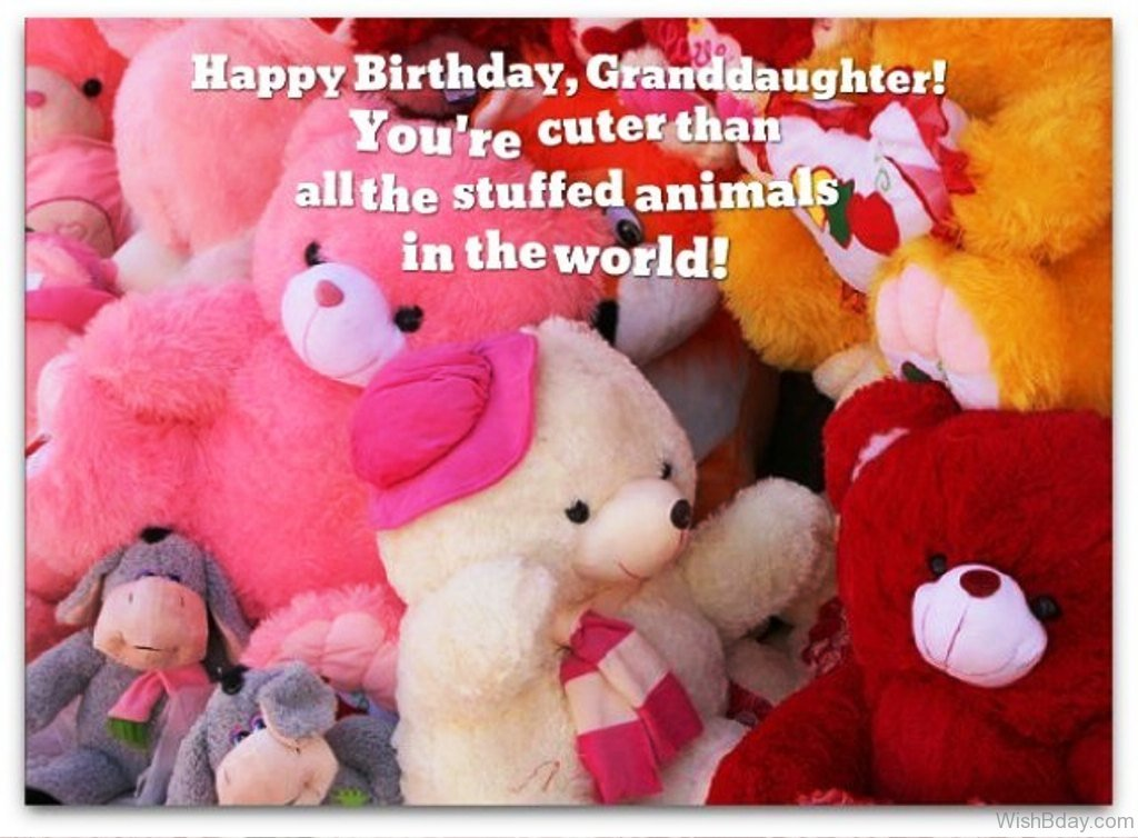 Granddaughter birthday quotes