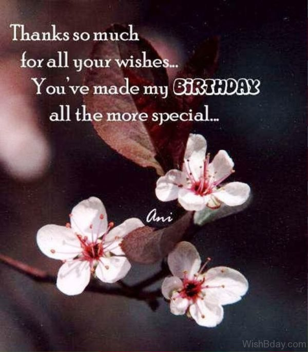 You Have Made My Birthday All The More Special