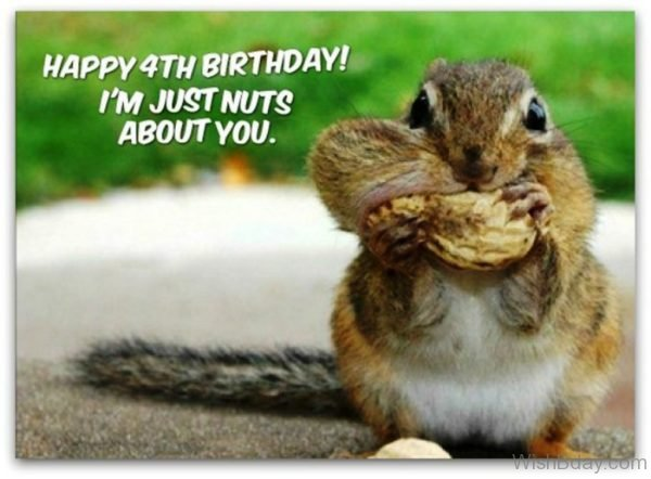 I Am Just Nuts About You