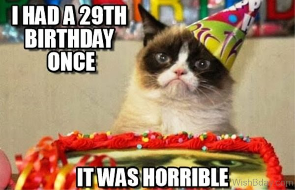 I Had A Twenty Nineth Birthday Once